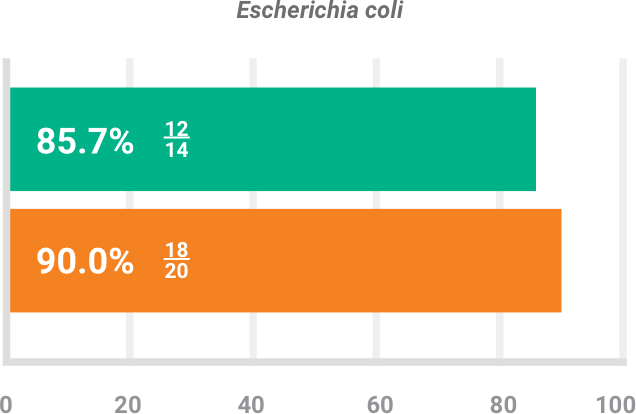 BAXDELA gram-negative pathogen Escherichia coli investigator-assessed success chart